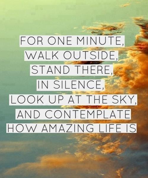 Quotes About Gratitude