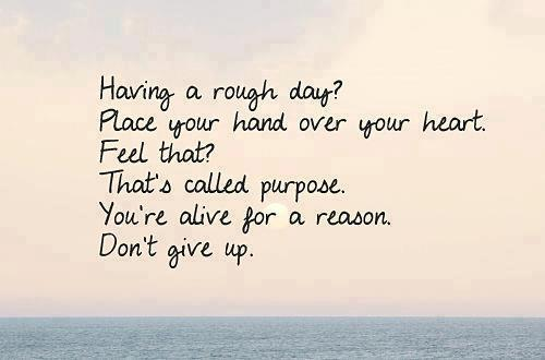 Quotes About Purpose