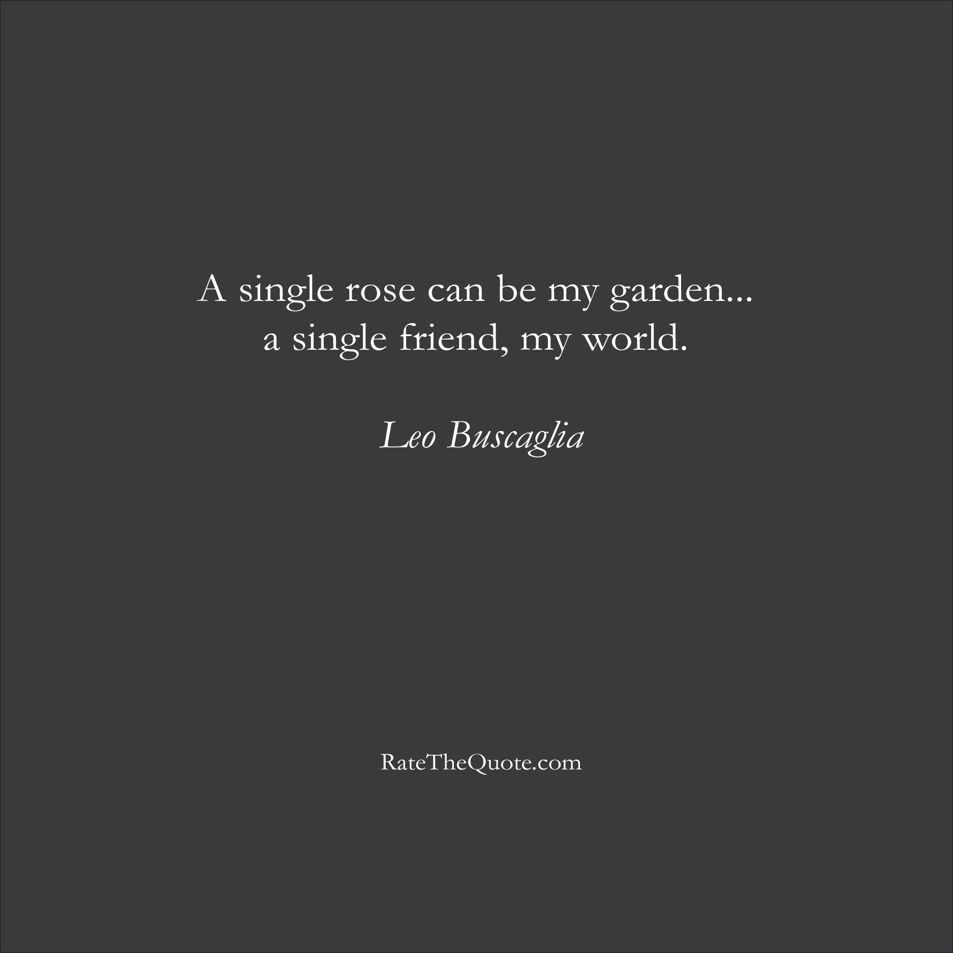 Friendship Quotes A single rose can be my garden... a single friend, my world. Leo Buscaglia