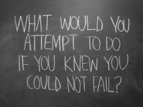 Beautiful Quotes: What would you attempt to do if you knew you could not fail?