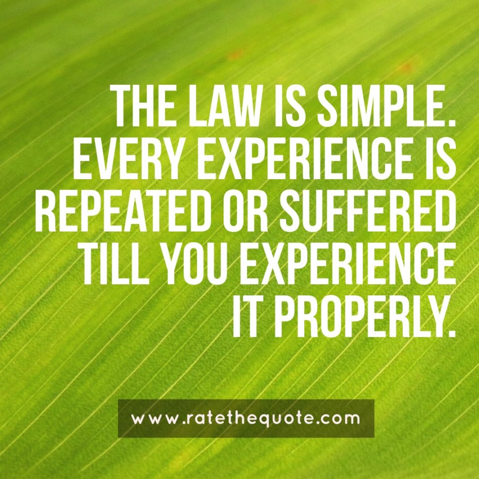 """""""The law is simple. Every experience is repeated or suffered till you experience it properly."""" – Ben Okri"""