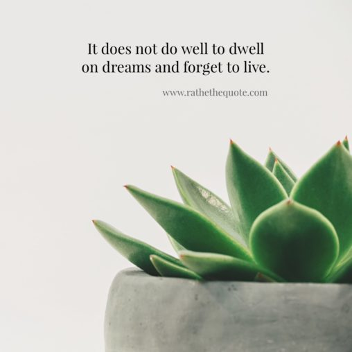 """It does not do well to dwell on dreams and forget to live."" – J.K. Rowling"
