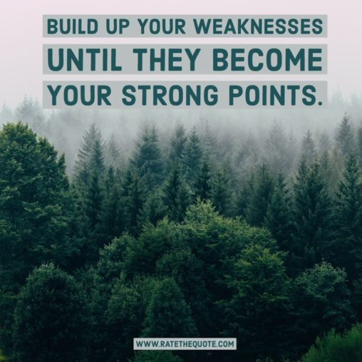 Build up your weaknesses until they become your strong points.