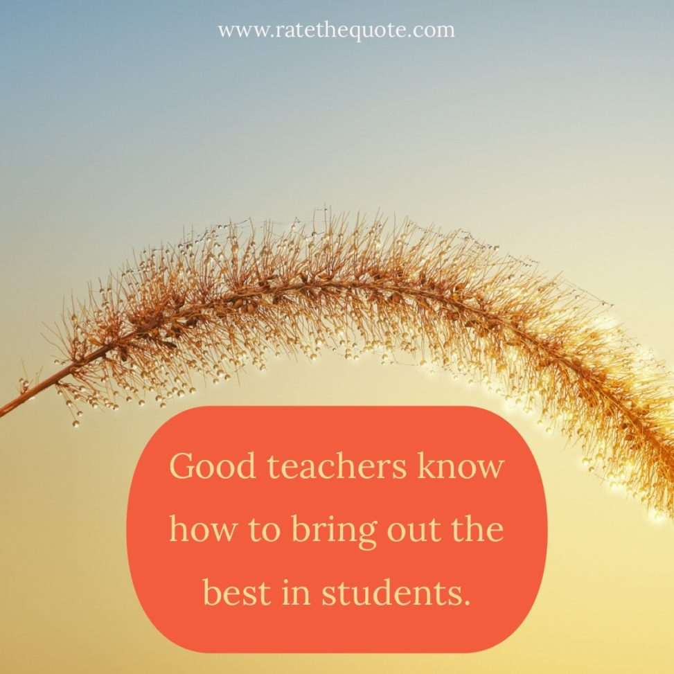 """""""Good teachers know how to bring out the best in students."""" Charles Kuralt"""