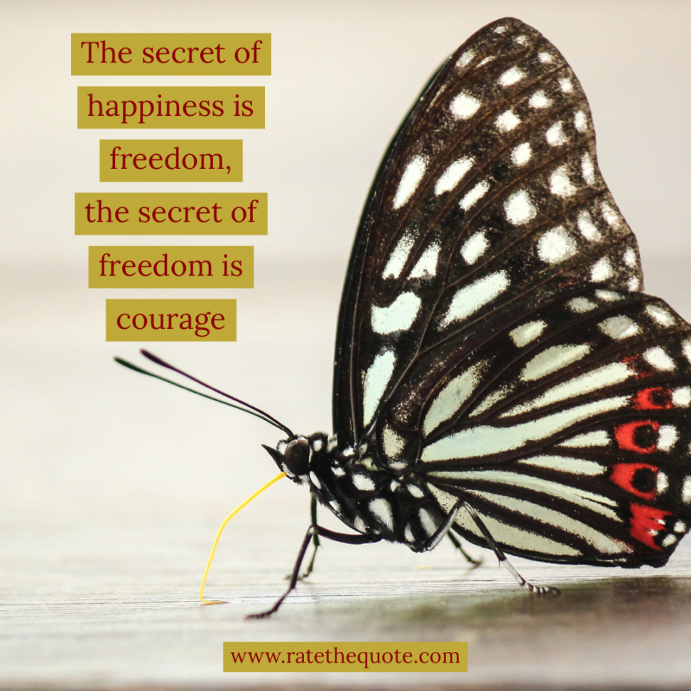 """The secret of happiness is freedom, the secret of freedom is courage."" – Carrie Jones"