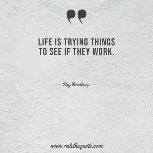 Life is trying things to see if they work.